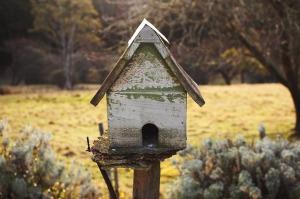 birdhouse-896259_1280
